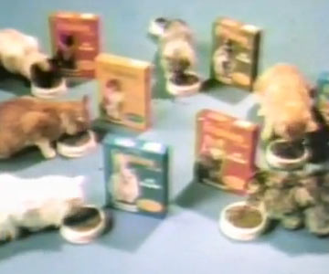 Old 1970s TV Commercial - Friskies - Little Friskies