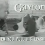 Gaylord the Robotic Pup